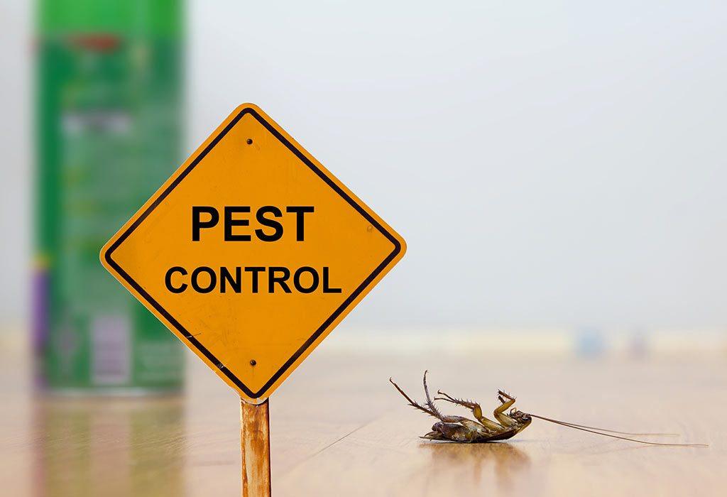 pest control services cape coral fl